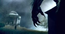 Profilový obrázek Creatures of darkness