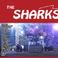 Profilový obrázek The Sharks