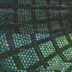 Profilový obrázek Mozaix