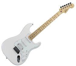 Profilový obrázek Milan Flender a jeho Stratocaster