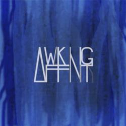 Profilový obrázek Awaking Affinity