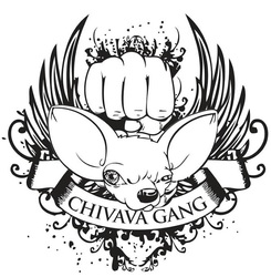 Profilový obrázek Chivava Gang