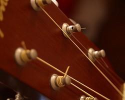 Profilový obrázek Acoustic riffs