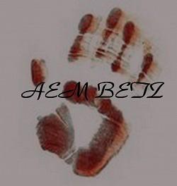 Profilový obrázek aembeatz