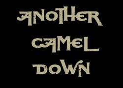 Profilový obrázek Another Camel Down