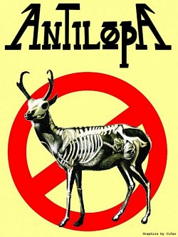 Profilový obrázek Antilopa