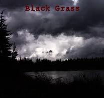 Profilový obrázek Black Grass
