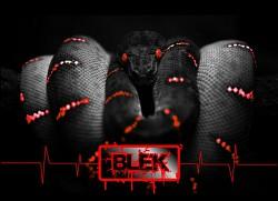 Profilový obrázek Blek