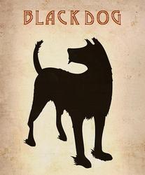 Profilový obrázek Black Dog