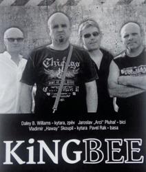Profilový obrázek King Bee