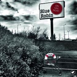 Profilový obrázek Blue Robin