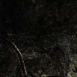 Profilový obrázek Bane