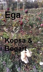 Profilový obrázek Ega