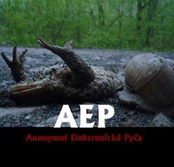 Profilový obrázek AEP