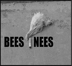 Profilový obrázek Beesnees