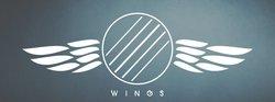Profilový obrázek Wings