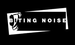 Profilový obrázek BITING NOISE