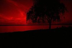 Profilový obrázek Bleeding Sky