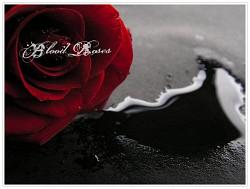 Profilový obrázek Blood Rose