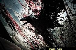 Profilový obrázek Bloody Crow