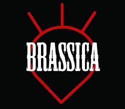 Profilový obrázek Brassica