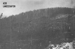 Profilový obrázek Acid Landschaften