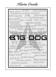 Profilový obrázek Big Dog
