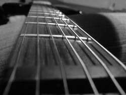 Profilový obrázek Guitar Electrification