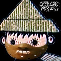Profilový obrázek Cafileric Mortůra