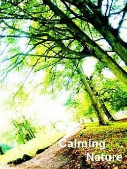 Profilový obrázek Calming Nature