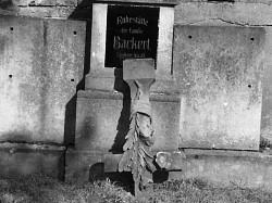 Profilový obrázek BacKert