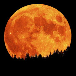Profilový obrázek Moon Of Destiny