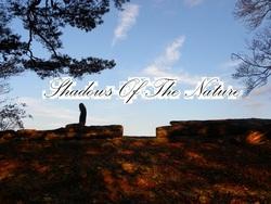 Profilový obrázek Shadows Of The Nature