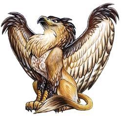 Profilový obrázek Griffin