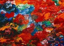 Profilový obrázek Colors of Everything