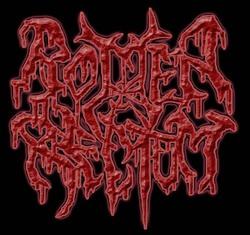 Profilový obrázek Rotten Rectum