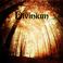 Profilový obrázek Divinium