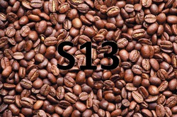 Profilový obrázek S13
