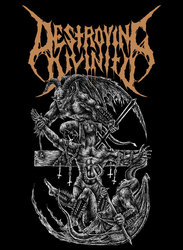 Profilový obrázek Destroying Divinity