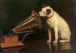 Profilový obrázek Dezert Rock of Boogie (Žižkovský D. R. B!)