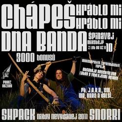 Profilový obrázek DNA Banda