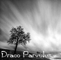 Profilový obrázek Draco Parvulus