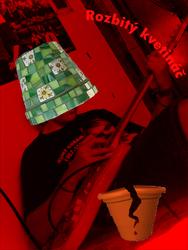 Profilový obrázek Rozbitý Kvetináč