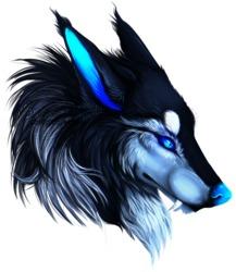 Profilový obrázek Sapphir