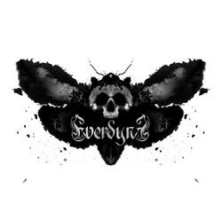 Profilový obrázek Everdyne