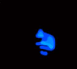Profilový obrázek KaNe