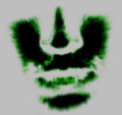 Profilový obrázek Martyr