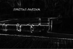 Profilový obrázek Sonitus Aurium