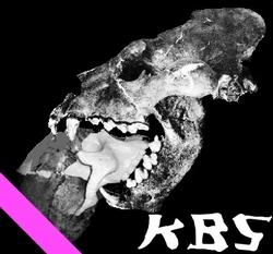 Profilový obrázek KBS