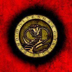 Profilový obrázek Whitesnake tribute band